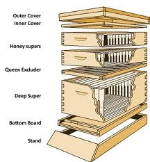 parts-of-a-beehive